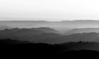 sort hvid billede