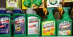 Avis: Kemivirksomheden Monsanto betalte Google for at begrave kritiske artikler