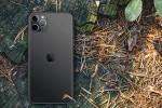 Brugte iPhones er blevet mere interessante