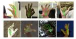 Google Translate bruger AI til at oversætte tegnsprog til tale