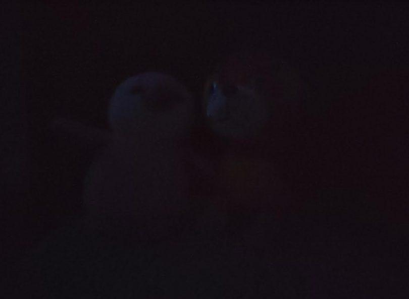Mørke uden brug af fotolys eller natfunktion 8.3