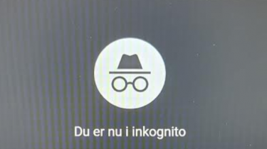 Google sagsøgt for tracking i incognito-mode