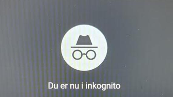 Google sagsøgt for tracking i incognito-mode