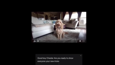 Chrome får live tekstning / caption af alle videoer og lydfiler