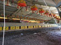 Stock Attrezzature per allevamenti di galline ovaiole a terra
