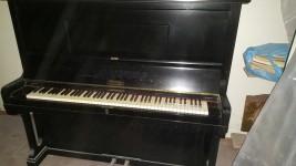 SALA GIOCHI, PIANOFORTE, TAVOLO, VECCHIA TAVOLA, BICICLETTA