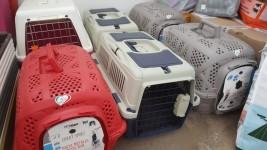 Accessori e attrezzatura varia per cani