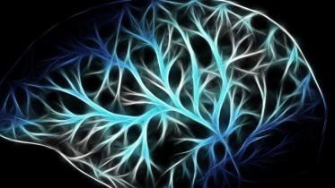 Skærmtid påvirker børns neurale netværk i hjernen negativt
