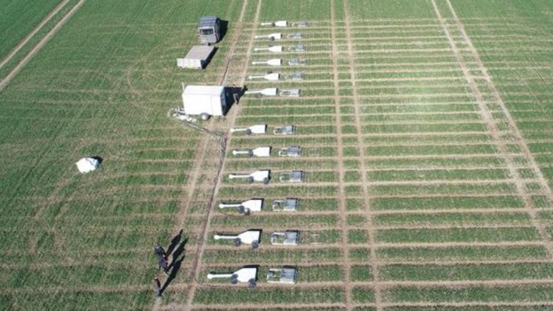Smarte sensorer og kunstig intelligens skal løfte dansk landbrug