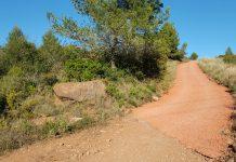Camí a la serra de l'Ataix