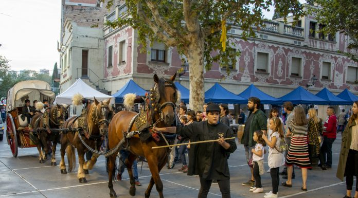 Festa del Most. Foto: Carles Porta