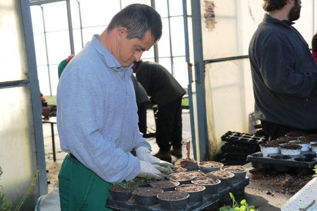 El Viver de Can Serra rep la Tercera Flor d'Honor