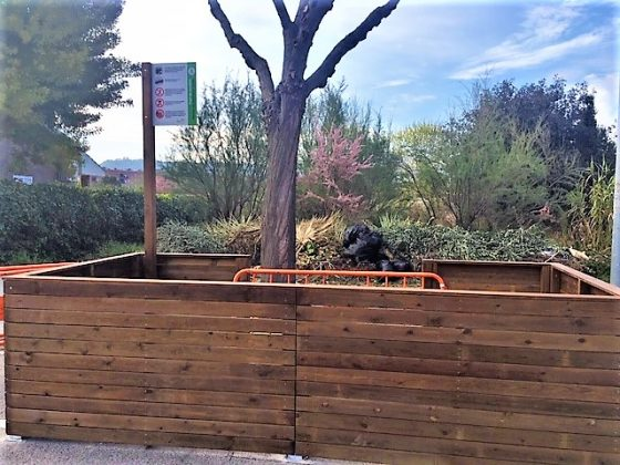 Punt recollida restes jardineria i poda