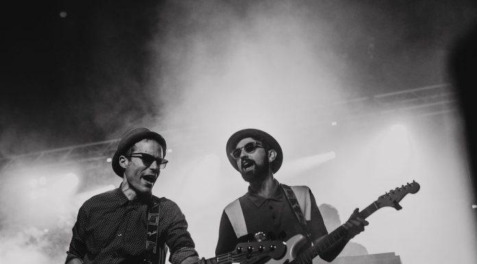 Penguins Band. Grisphoto