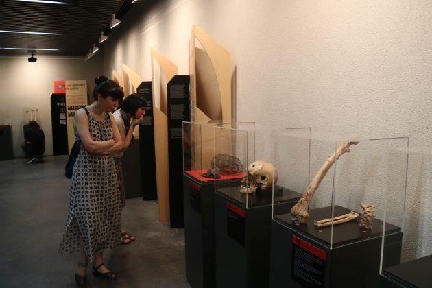 """Exposició itinerant """"Ossos. Un viatge a l'època medieval de la mà de l'antropologia física"""""""