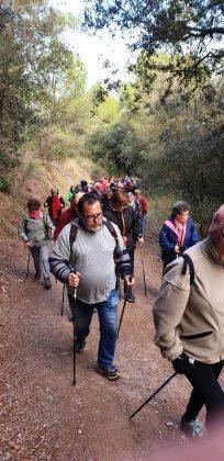 'Passejades per a la gent gran' de la Diputació de Barcelona