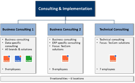Graphic view of the new structure of the TecAlliance Consulting &Implementation Division