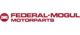 Federal-Mogul Holding Deutschland GmbH Logo
