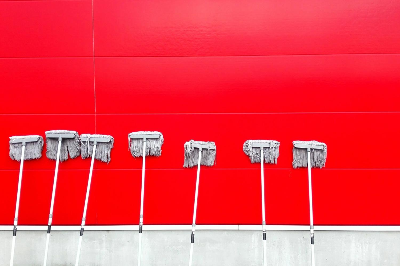 Mops an der Wand. Foto: Pan Xiaozhen/Unsplash