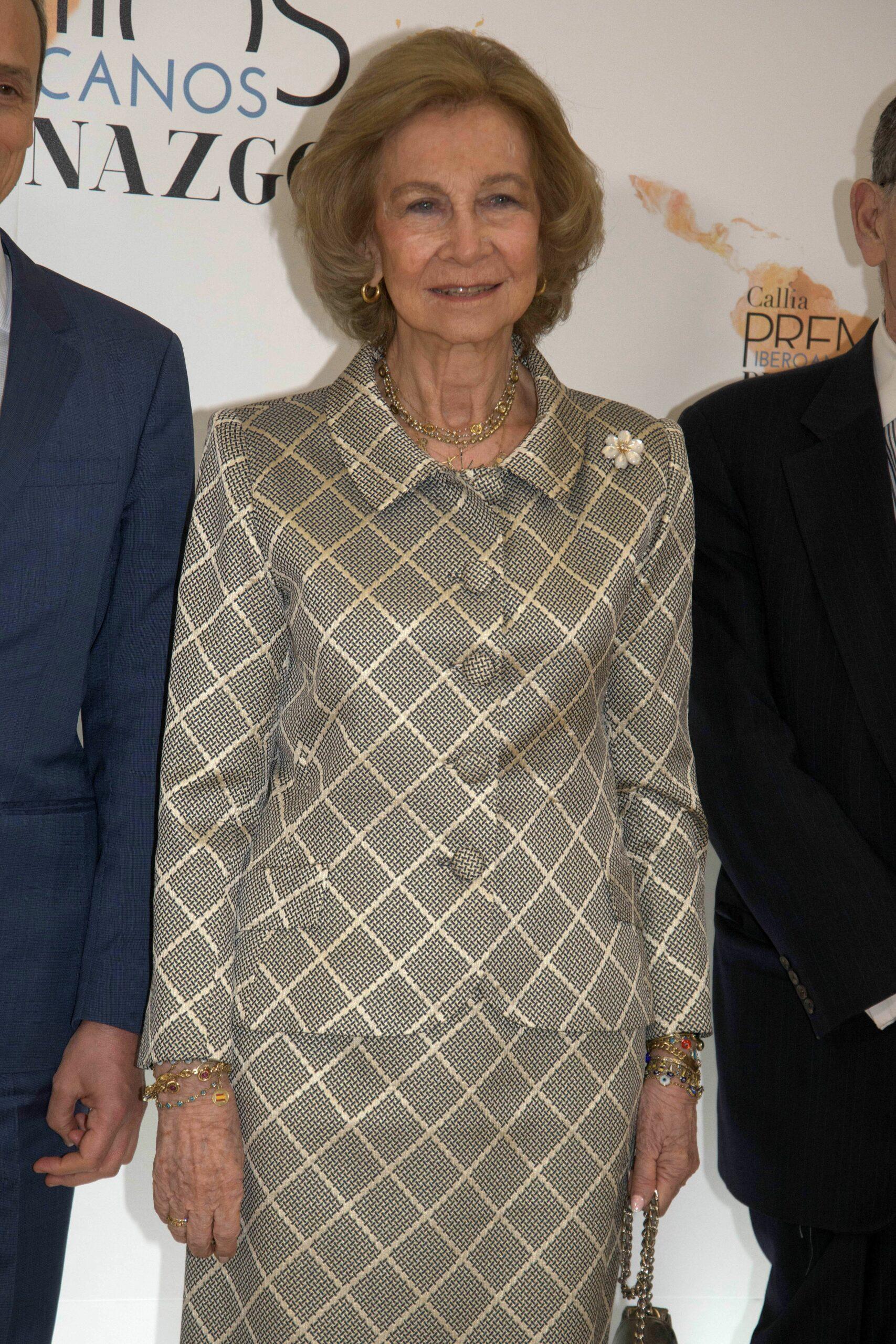 La reina Sofia, a l'entrega de premis iberoamericans   Europa Press