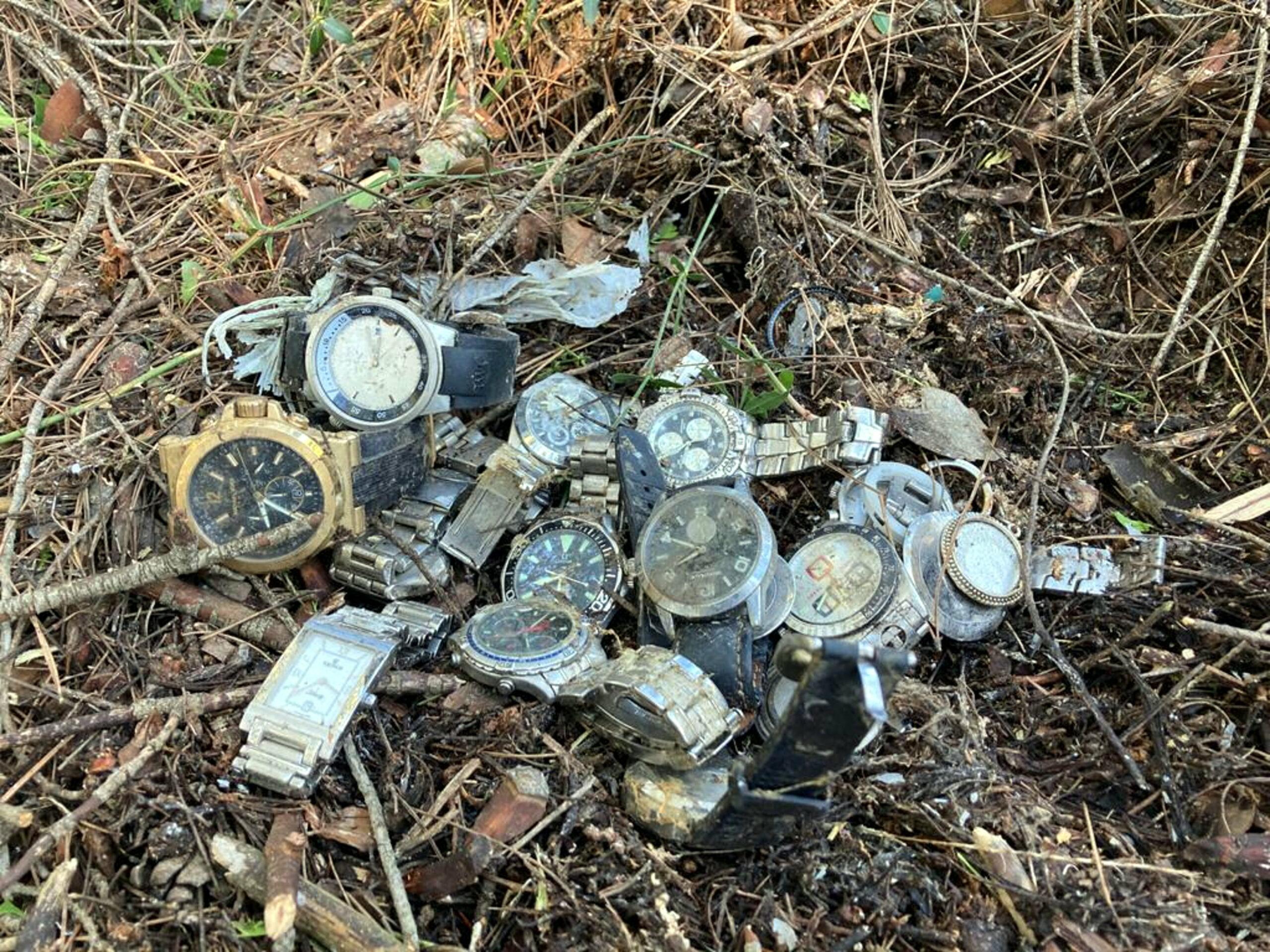 Els rellotges trobats al bosc per un veí de la vall de Sant Daniel   ACN