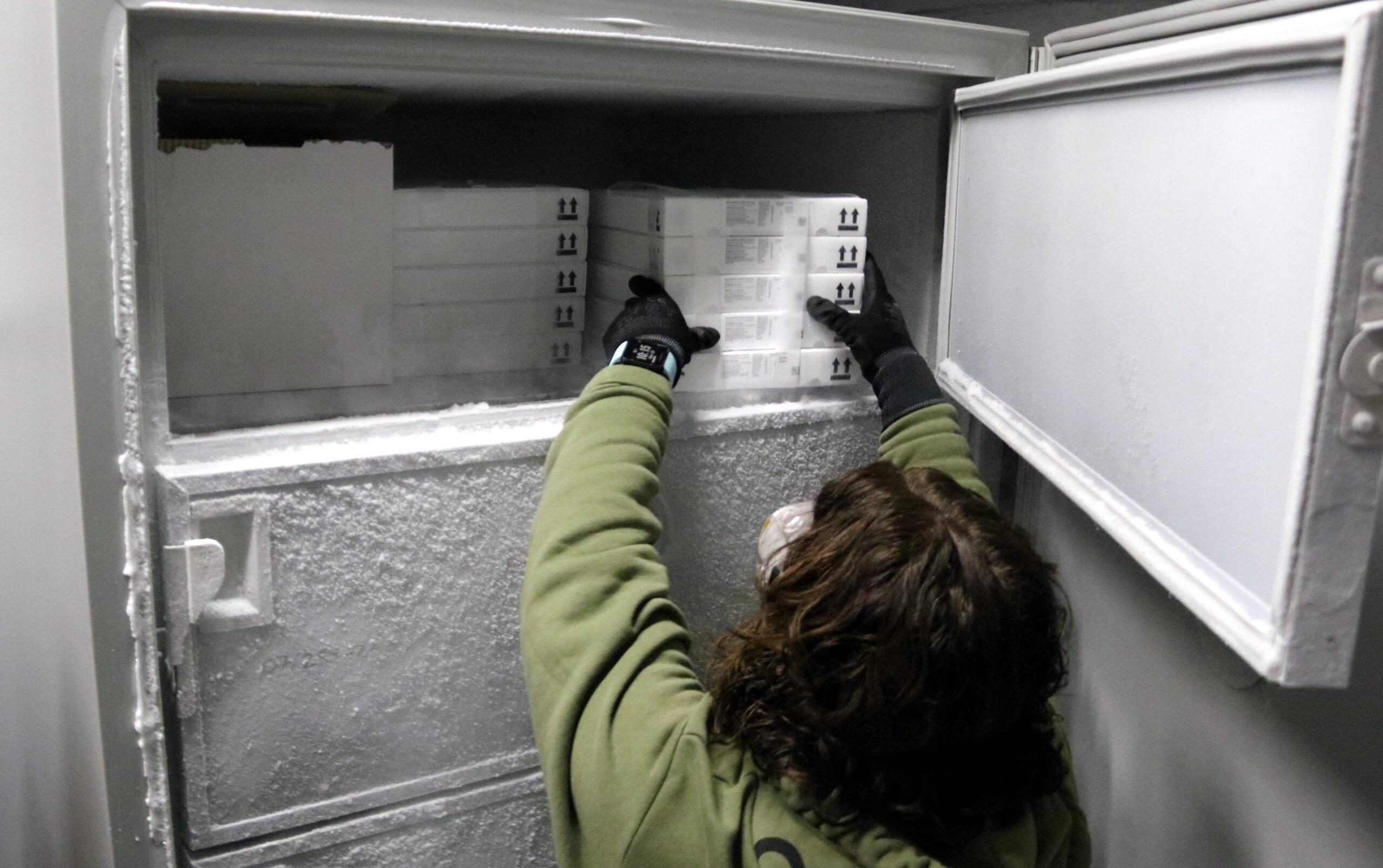 Una treballadora posant una capsa de vacunes al congelador | ACN