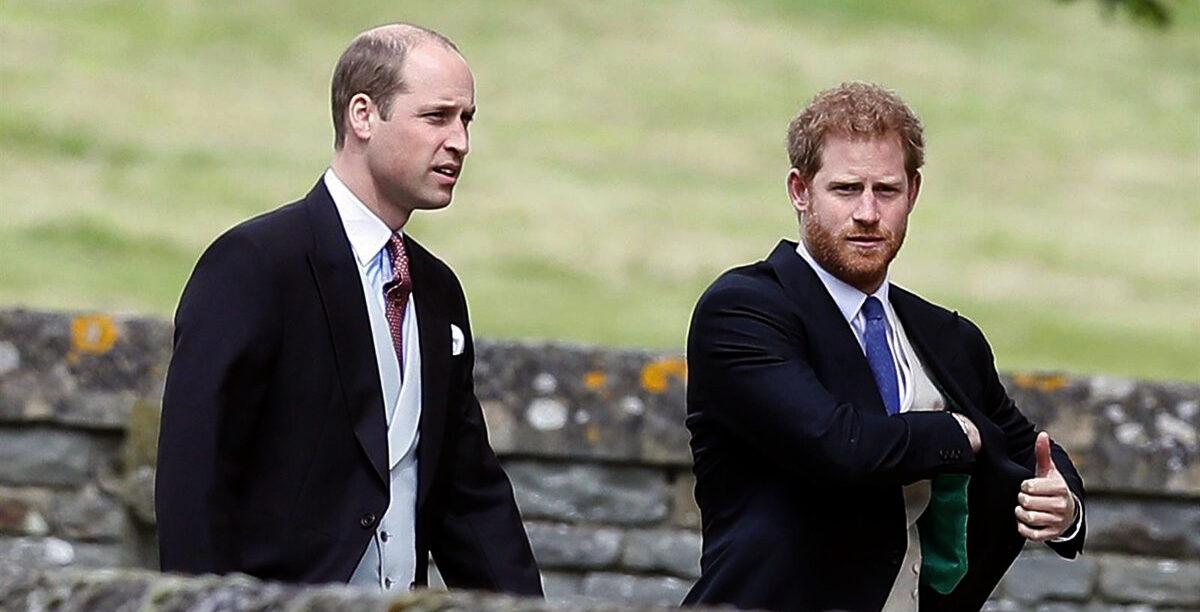 Els prínceps Guillem i Harry - Europa Press