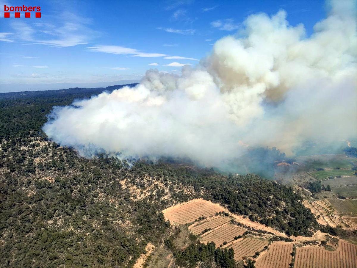 Imatge aèria de l'incendi forestal de Senan, a la Conca de Barberà | ACN