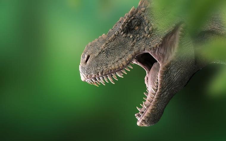 Reproducció artística d'un tiranosaure rex   Pxfuel
