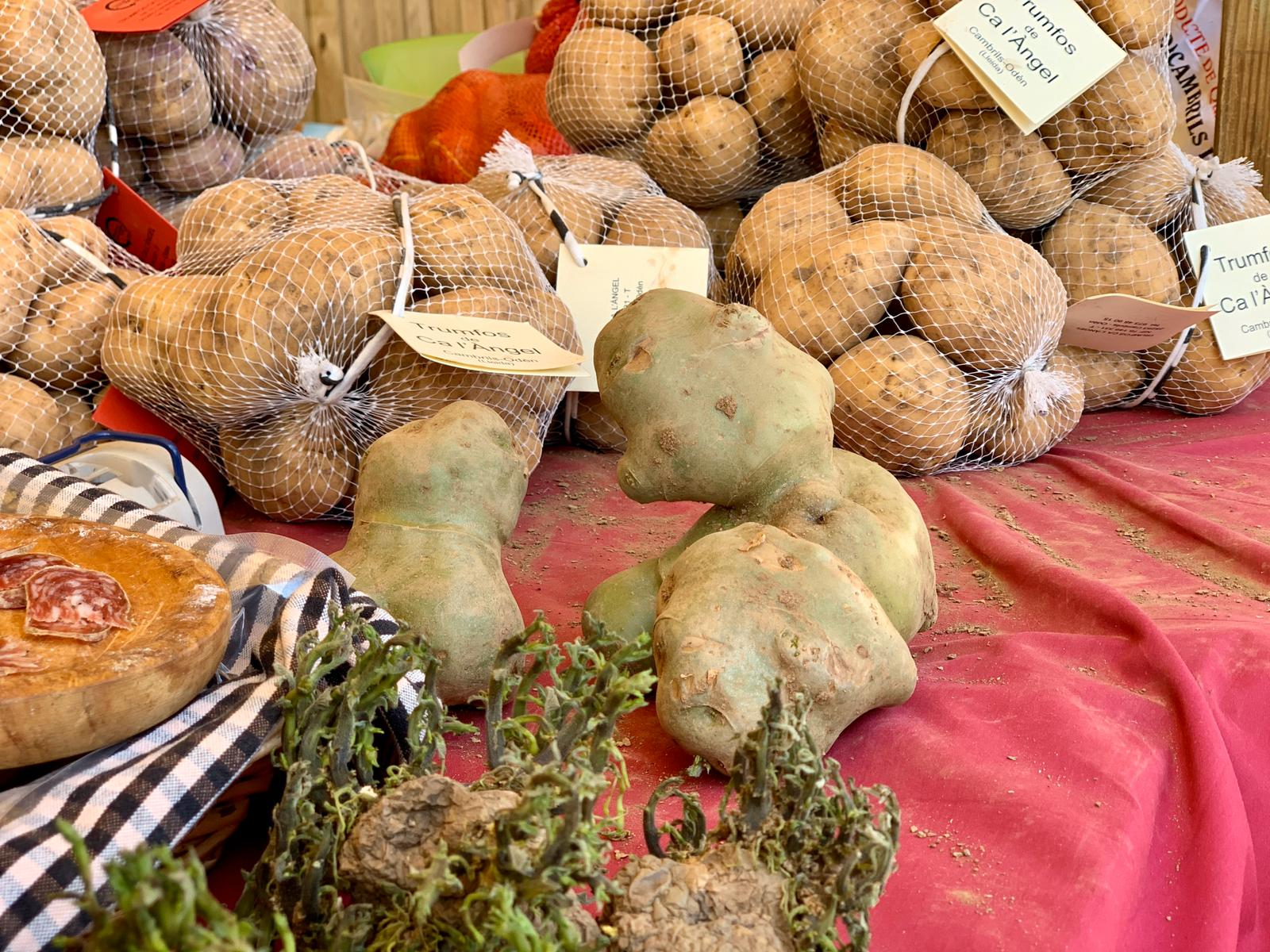 Diferents tipus de patates en una parada de la Fira del Trumfo i la Tòfona | Mercè Magaña