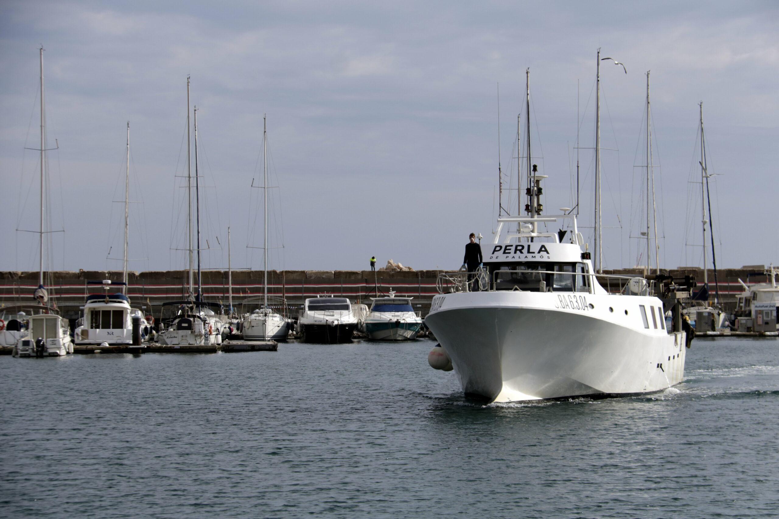 Una de les barques d'arrossegament de Palamós tornant a port abans d'aturar l'activitat | ACN