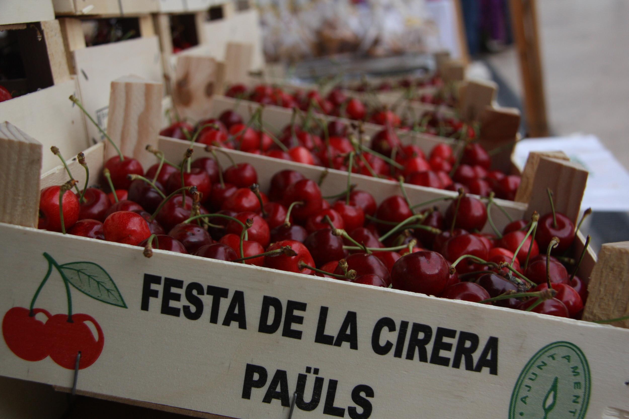 Caixes de cireres de Paüls en la XIII Festa de la Cirera | ACN