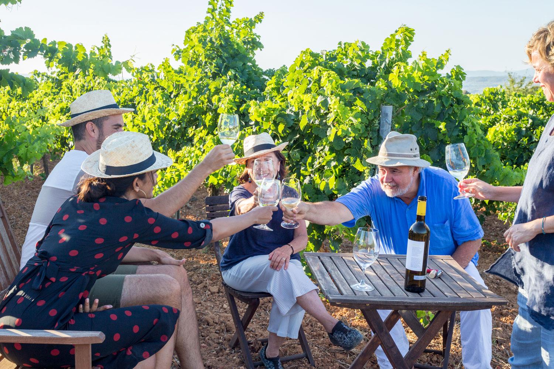 Un grup de persones brindant amb vi entre vinyes