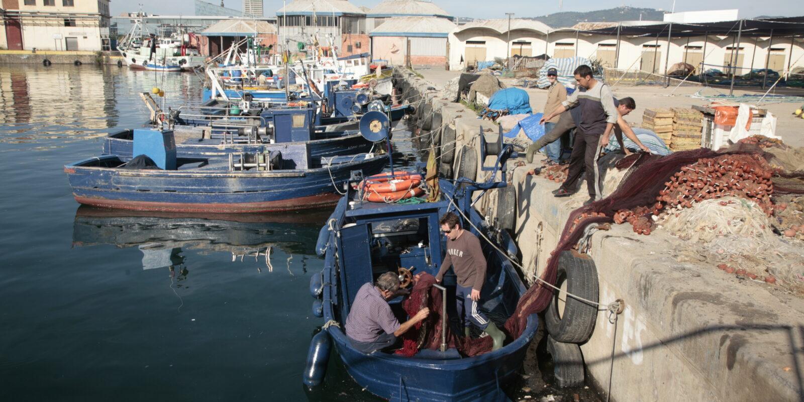 Barques descarregant al Moll de Pescadors de la Barceloneta / Vicens Ferrer - Confraria de Pescadors de Barcelona