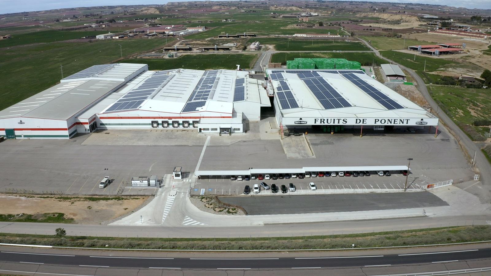 Vista aèria de les instal·lacions de Fruits de Ponent d'Alcarràs | ACN