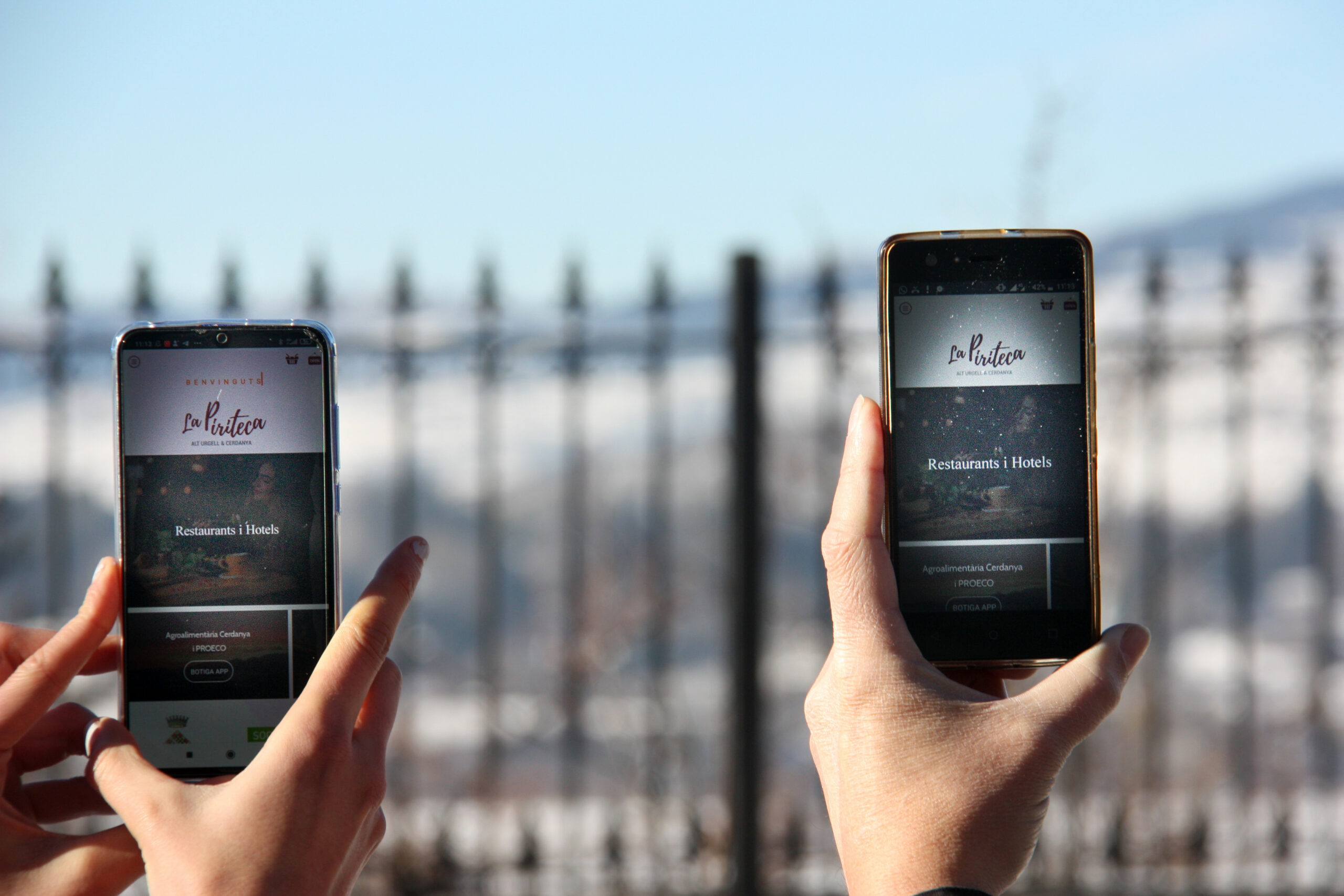 Dos telèfons mòbils amb l'aplicació 'La Piriteca' oberta i un paisatge de la Cerdanya nevada al fons   ACN