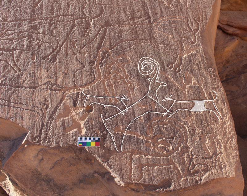 Pintura en una roca que mostra gossos caçant | Comissió Reial per a Al-Ula