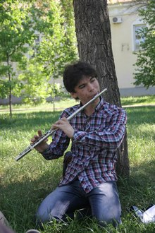 Maxtone Поперечная Флейта