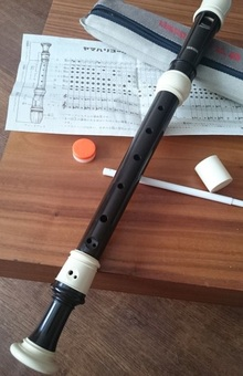Yamaha YRS-314biii in C блок-флейта1999 под макасарское чёрное дерево