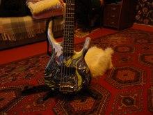 Custom Made Bass  Swirl