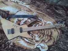Explorer Bass 5 струн (гриф Peavey Foundation 5)
