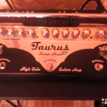 Taurus Stomp-Head 4. SL HG + кабинет TC-112