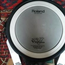 Roland Hd-3