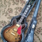 Bad Cat 553 Semi Hollow body Luxury Dark Brown