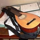 Silver   Гитара с корпусом лютни (Travel guitar) Маленькая 2015 Жёлто-коричневые