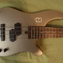 Fernandes FG03121912 + EMG PJ set  2003 серый металлик лак
