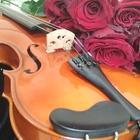 Скрипка Ярослава Дворака, Чехия