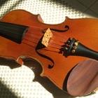 Скрипка французского мастера Georges Chanot, 1825 год