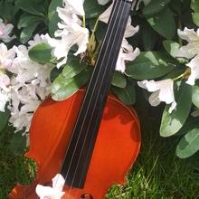 Скрипка 4/4 Skaylark Brand