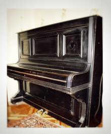 C. M. Schroder C. M. Schroder 1906 Черный